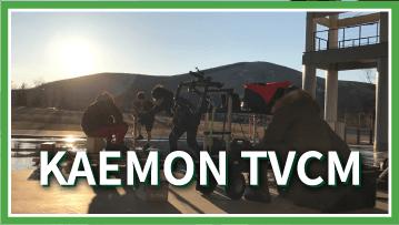 嘉衛門 TVCM